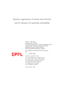 Thumbnail of Dynamic organization of human brain function and its relevance for psychosis vulnerability